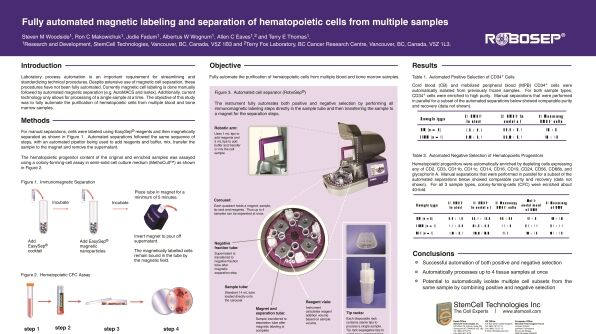 Fully Automated Magnetic Labeling and Separation of Hematopoietic Cells from Multiple Samples