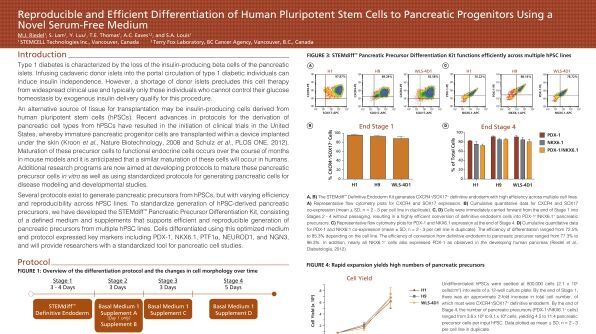 Reproducible and Efficient Differentiation of Human Pluripotent Stem Cells to Pancreatic Progenitors Using a Novel Serum-Free Medium