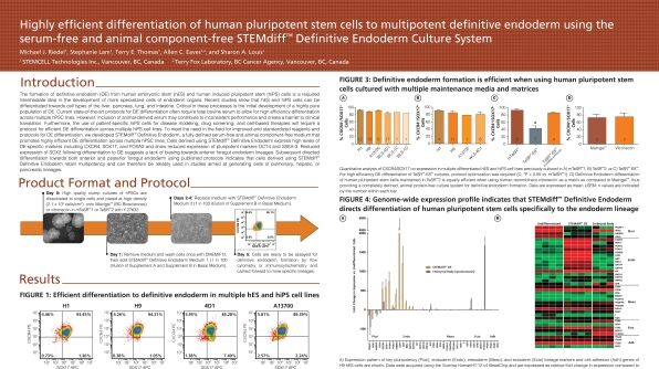 Highly Efficient Differentiation of Human Pluripotent Stem Cells to Multipotent Definitive Endoderm Using STEMdiff™ Definitive Endoderm Culture System