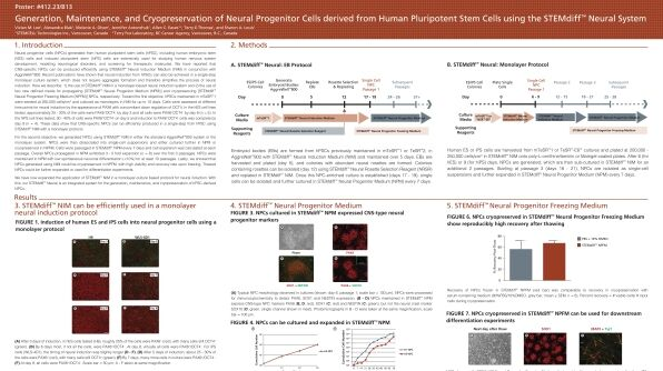 Generation, Maintenance and Cryopreservation of Neural Progenitor Cells Derived from Human Pluripotent Stem Cells Using the STEMdiff™ Neural System