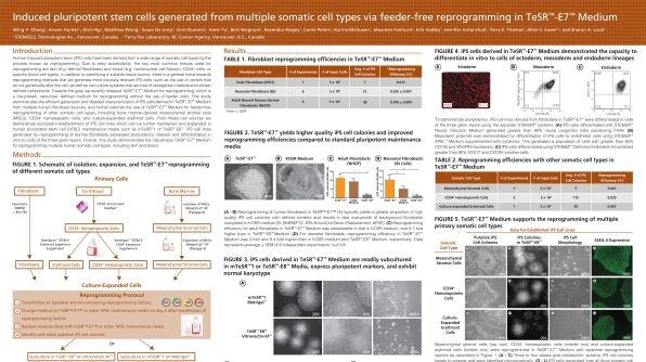 Induced Pluripotent Stem Cells Generated from Multiple Somatic Cell Types via Feeder Free Reprogramming in TeSR™-E7™ Medium