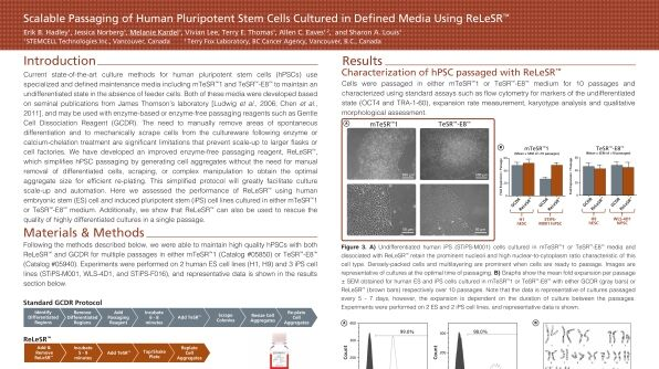 Scalable Passaging of Human Pluripotent Stem Cells Cultured in Defined Media Using ReLeSR™