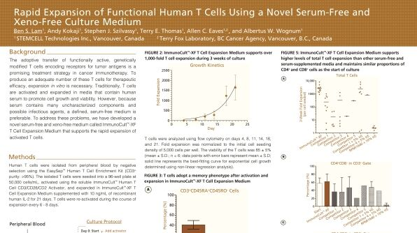 Rapid Expansion of Functional Human T Cells Using a Novel Serum-Free and Xeno-Free Culture Medium