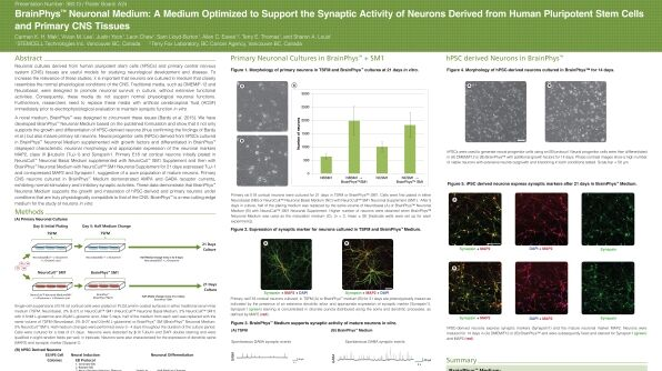 BrainPhys™ Neuronal Medium: A Medium Optimized to Support the Synaptic Activity of Neurons Derived from Human Pluripotent Stem Cells and Primary CNS Tissues