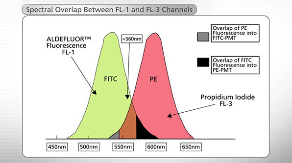 Flow Cytometry Analysis of ALDH Bright Cells with the ALDEFLUOR™ Assay Kit
