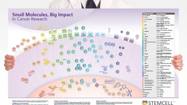 Small Molecules, Big Impact in Cancer Research