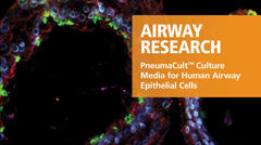PneumaCult™ Culture Media for Human Airway Epithelial Cells