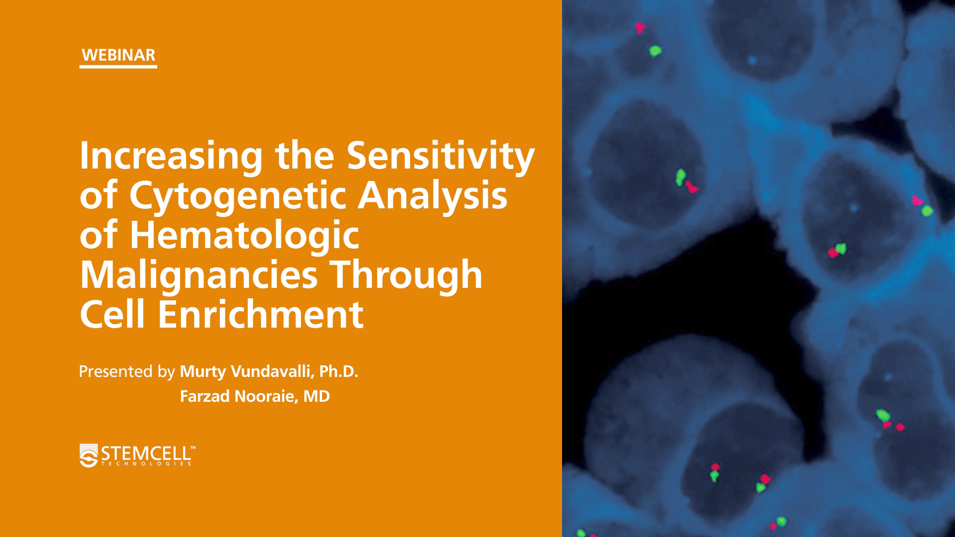 Increasing the Sensitivity of Cytogenetic Analysis of Hematologic Malignancies Through Cell Enrichment