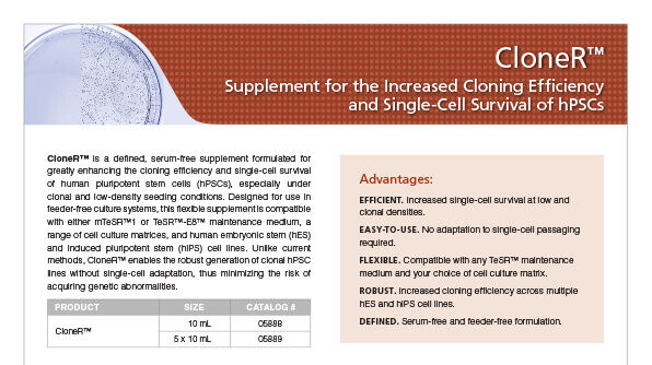 CloneR™ Supplement for the Increased Cloning Efficiency and Single-Cell Survival of hPSCs