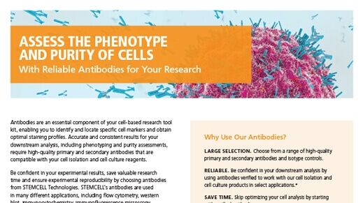 Reliable Antibodies for Your Research