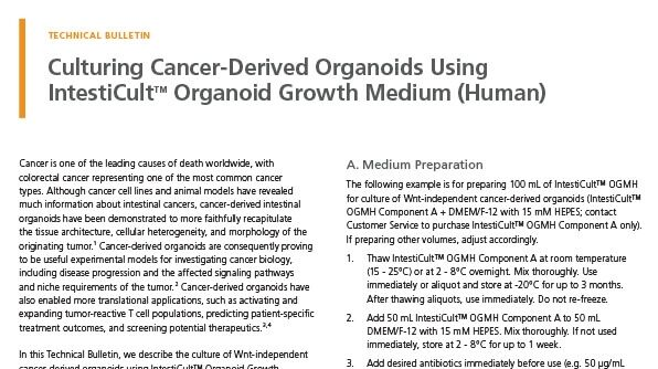 Culturing Cancer-Derived Organoids Using IntestiCult™ Organoid Growth Medium (Human)