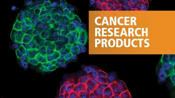 Tools for Cancer Research