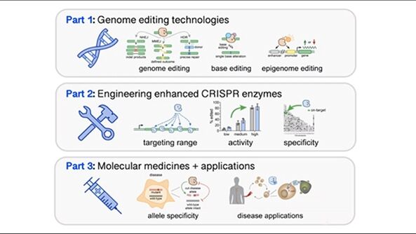Improving Genome Editing with Enhanced CRISPR-Cas Nucleases