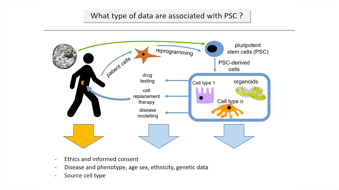 Data Quality and Standards for Pluripotent Stem Cells
