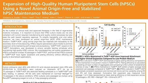 Expansion of High-Quality Human Pluripotent Stem Cells (hPSCs) Using a Novel Animal Origin-Free and Stabilized hPSC Maintenance Medium