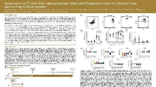 Generation of T Cells from Hematopoietic Stem and Progenitor Cells in a Stroma-Free, Serum-Free Culture System