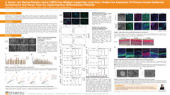 A Serum- and Bovine Pituitary Extract (BPE)-Free Medium Supporting Long-Term, Feeder-Free Expansion Of Primary Human Epidermal Keratinocytes that Retain Their Air-Liquid Interface Differentiation