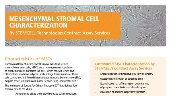 Mesenchymal Stromal Cell Characterization Services