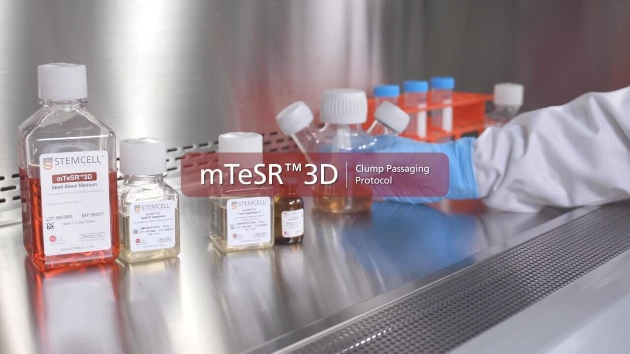 How to Passage hPSC Aggregates in mTeSR™3D Suspension Culture with a Clump Passaging Method