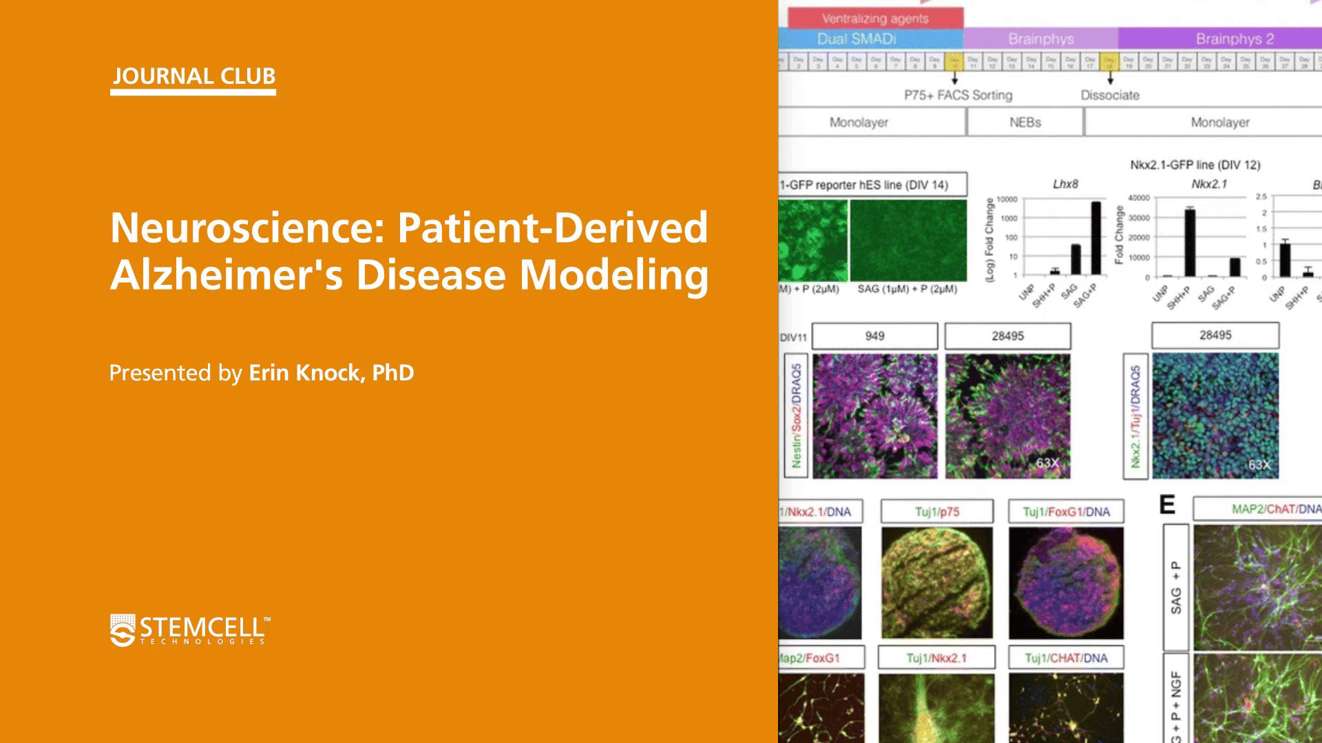 STEMCELL Journal Club: Patient-Derived Alzheimer's Disease Modeling