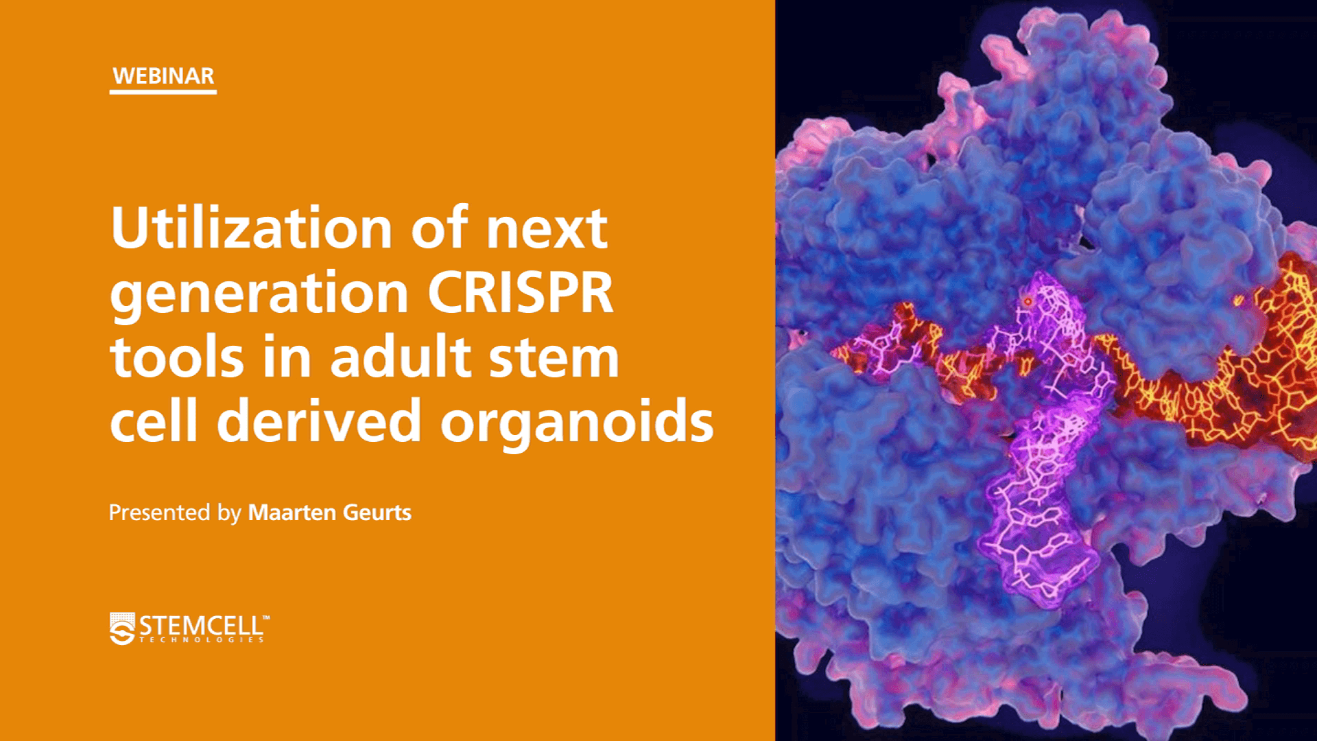 Organoid Mini-Symposium: Utilization of Next Generation CRISPR Tools to Model Health and Disease in Adult Stem Cell-Derived Organoids