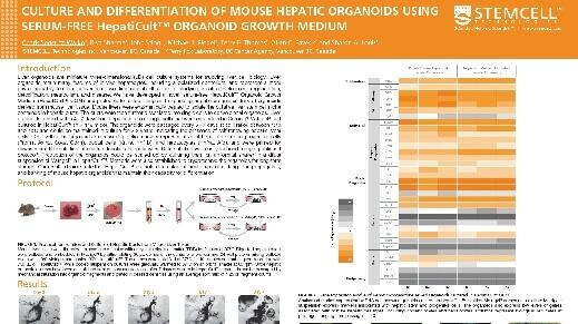 Culture and Differentiation of Mouse Hepatic Organoids Using Serum-free HepatiCult™ Organoid Growth Medium