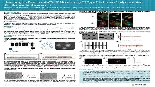 Heterozygous Deletion of KCNH2 Models Long QT Type 2 in Human Pluripotent Stem Cell-Derived Cardiomyocytes