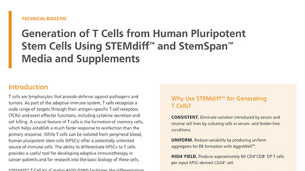 Generation of T Cells from Human Pluripotent Stem Cells Using STEMdiff™ and StemSpan™ Media and Supplements