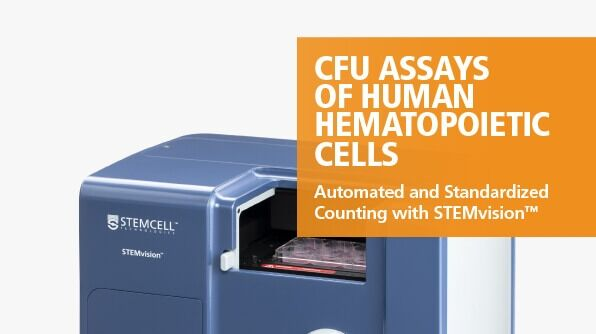 STEMvision™ Automated and Standardized Counting of CFU Assays of Human Hematopoietic Cells