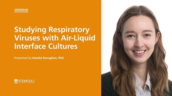 Studying Respiratory Viruses with ALI Cultures