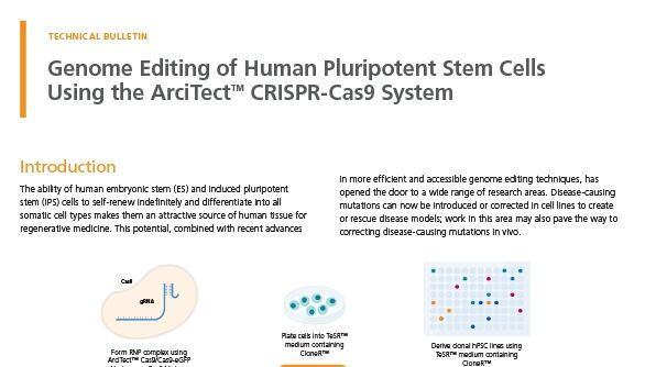 Genome Editing of Human Pluripotent Stem Cells Using the ArciTect™ CRISPR-Cas9 System