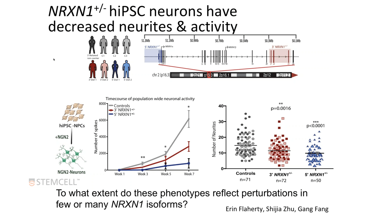 Using hiPSCs to Study Genetic Variants Linked to Schizophrenia