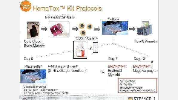 Anticipating Cytopenia: In Vitro Methods for Hematotoxicity Testing