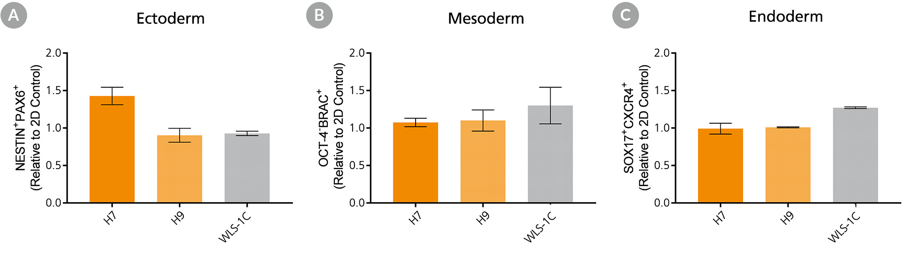 Expression of lineage-specific markers measured in ectoderm, mesoderm, and endoderm differentiated from human ES and iPS cells cultured in TeSR™-E8™3D suspension culture.