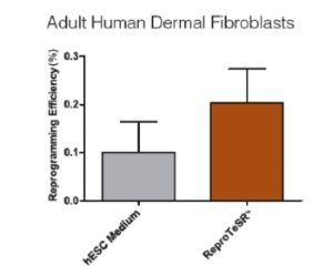ReproTeSR™ Efficiently Reprograms Fibroblasts