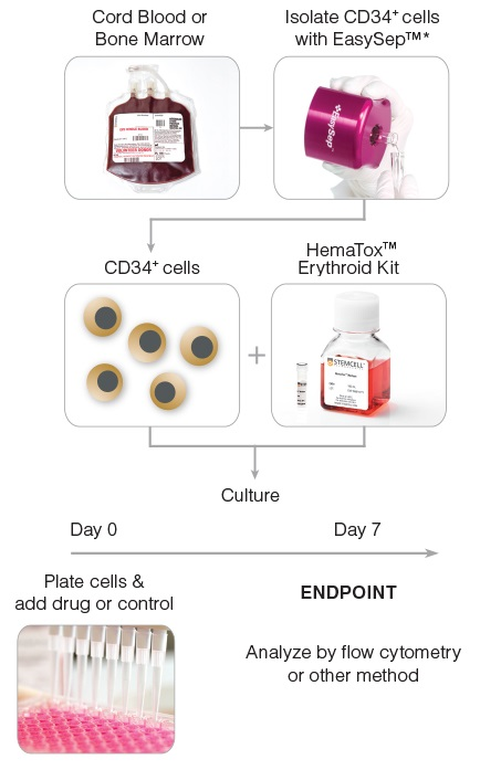 General HemaTox™ Erythroid Kit Procedure