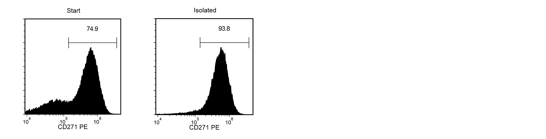 A H9 cell-derived cell suspension assessed for CD271-PE. The the start and final isolated fractions are 74.9% and 93.8% pure.