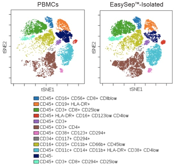 Using PBMCs as a startnig sample, this t-SNE plot shows that EasySep™-isolated CD45+ cells are representative of the starting leukocyte population.