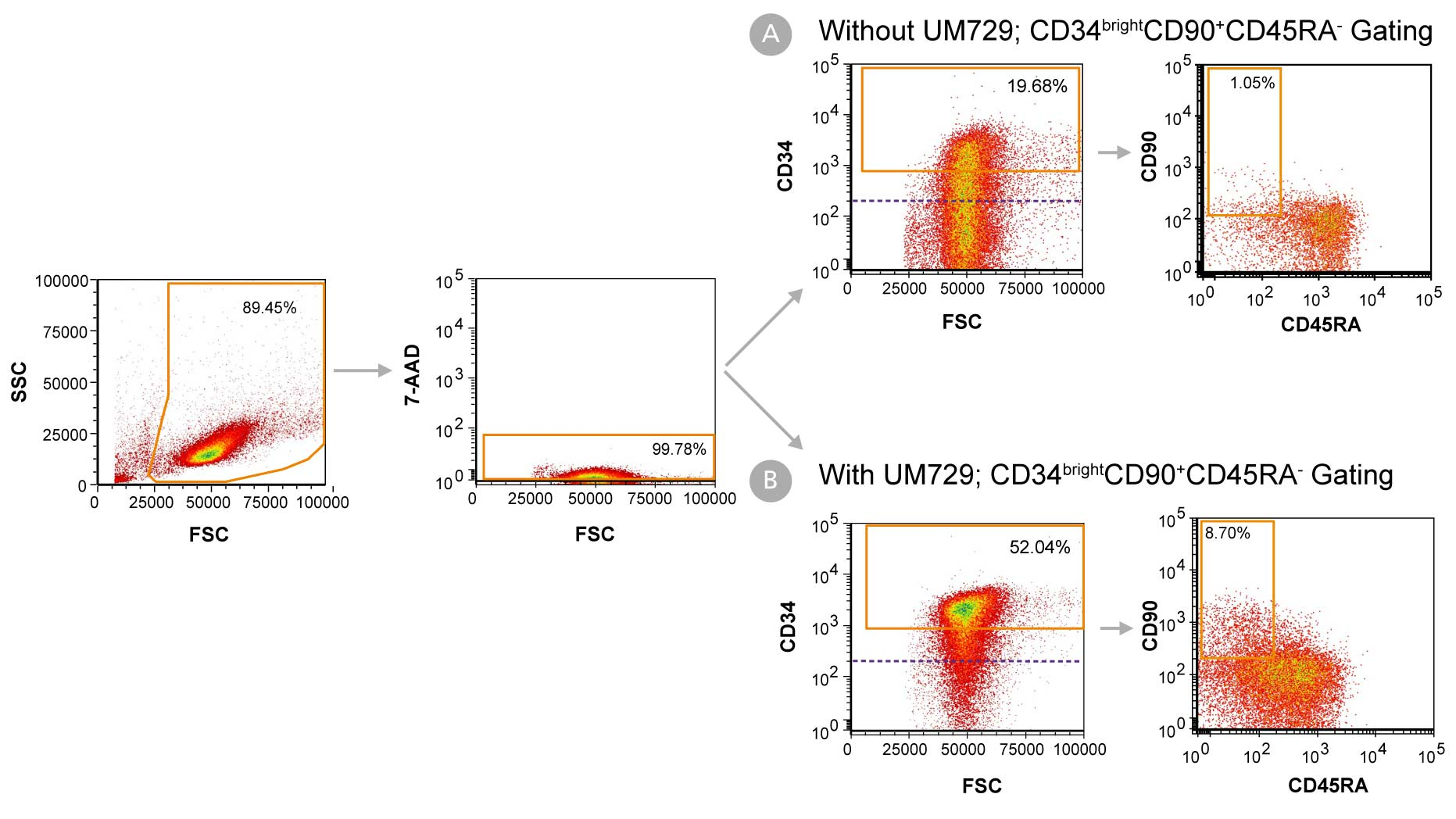 Day 7 Immunophenotyping of CD34+ Cells Cultured in StemSpan™-ACF Without Phenol Red