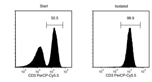 T Cell Separation using EasySep™ Human T Cell Isolation Kit