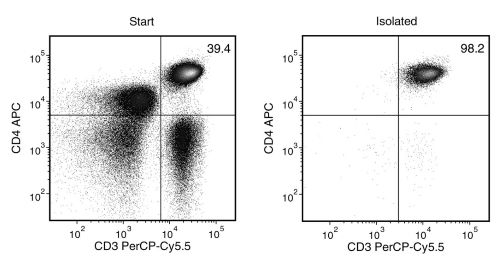 CD4+ T cell separation using EasySep™ Human CD4+ T Cell Isolation Kit