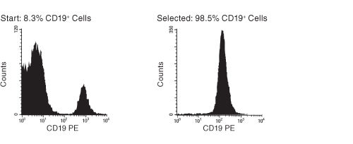 FACS Histogram Results with EasySep™ CD19+ Positive Selection Kit