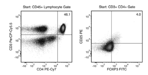 Typical Treg Isolation Using EasySep™ Human CD4+CD127lowCD25+ Regulatory T Cell Isolation Kit