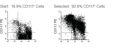 FACS Profile Results with EasySep™ Mouse CD117 (c-KIT) Positive Selection Kit
