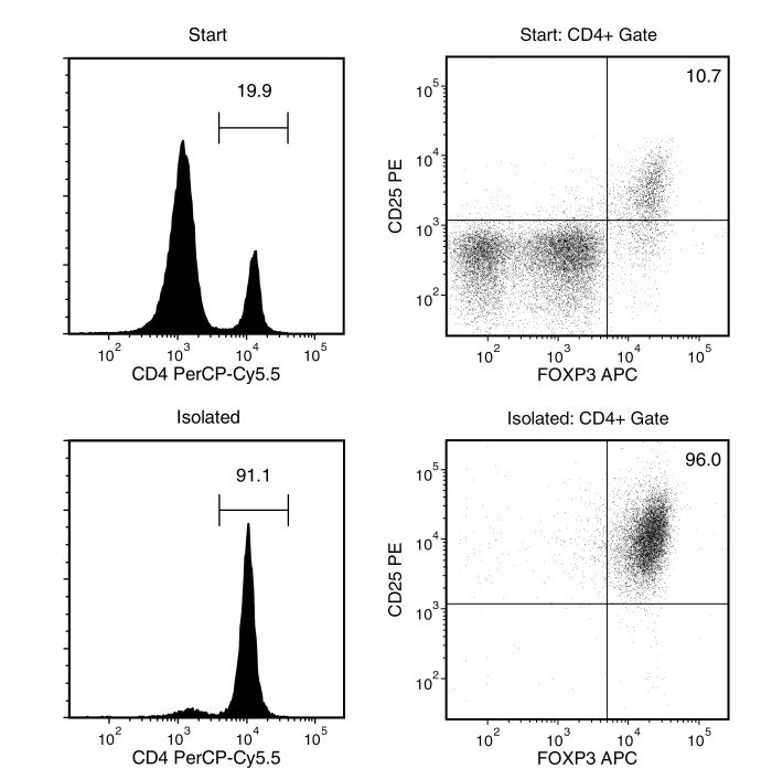 Typical EasySep™ Mouse CD25 Regulatory T Cell Positive Selection Profile