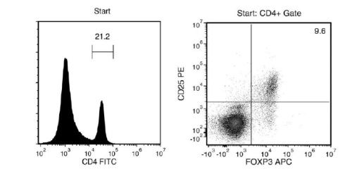 FACS Histogram Results with EasySep™ Mouse CD4+CD25+ Regulatory T Cell Isolation Kit II