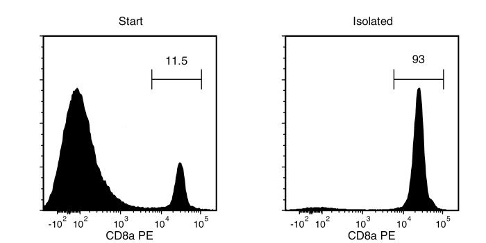Typical EasySep™ CD8a Positive Selection Profile