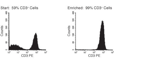 FACS Histogram Results with EasySep™ HLA T Cell Enrichment Kit