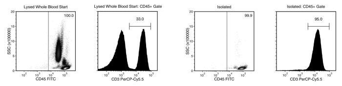 Isolated T cells from whole blood obtained using EasySep™ Direct human T cell isolation kit
