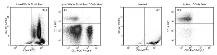 Starting with human whole blood from normal healthy donors, the typical B cell (CD3-CD19+) content of the non-lysed final isolated fraction is 87.0 ± 7.6% (gated on CD45) or 84.1 ± 11.7% (not gated on CD45)